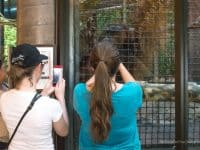 Two teens taking photos at Sedgwick County Zoo