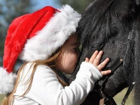 Wichita Riding Academy horseback riding lessons for kids