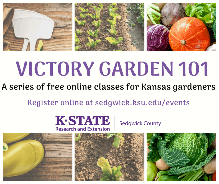 free gardening classes online from k-state research and extension sedgwick county